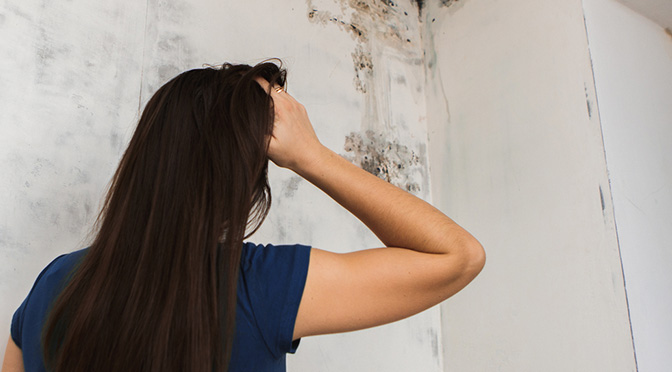 How to Prevent and Kill Mold in your Bathroom   Fords Plumbing